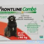 frontline-combo-cane-20.40