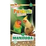 manitoba-parrocchetti-parakeets