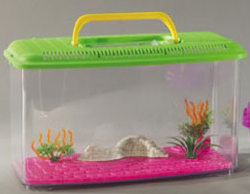 acquari e vaschette per pesci rossi acquario in plastica