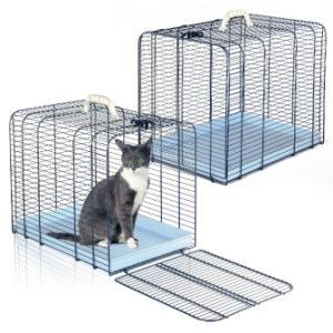 trasporto gatto 3 Imac