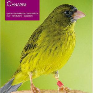 libro i canarini