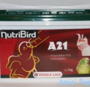 nutribird a21 versele laga pappa per imbecco pappagalli baby da allevare a mano