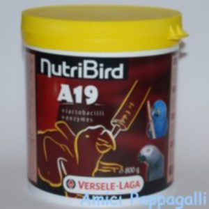 nutribird a19 versele laga pappa per imbecco pappagalli da allevare a mano