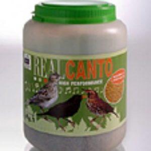 canary realcanto il pastone per gli insettivori