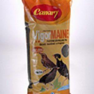canary pellettato per maine e merli