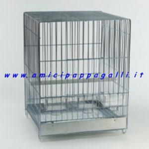 gabbia rori per pappagalli domus molinari