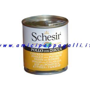 Schesir dog