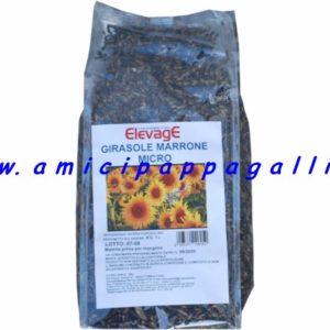 semi di girasole micro elevage ideale per gli uccelli, cardellini, spinus, fringillidi, ricco di proteine e vitamina E