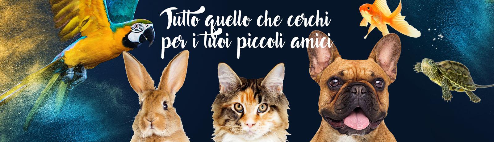 Amici Pappagalli